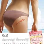 美尻カレンダー2012_11月12月